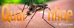 Día Internacional contra el Dengue.